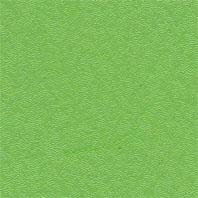 سبز فسفری DF229