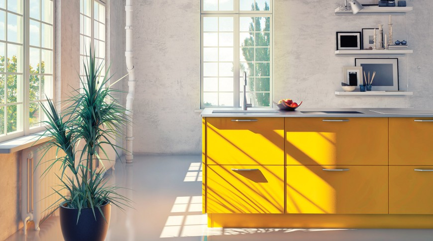 P_Cuisine_K11_Daffodil-Narcisse-870x485