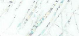 رعد سفید D301